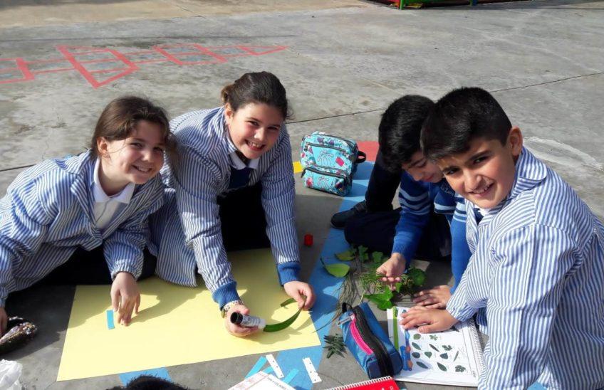 Actividad recreo sobre plantas, colegio La Luna